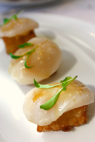 Scallop Sashimi with Crispy Rice (Photo courtesy of Foodish Fetish)