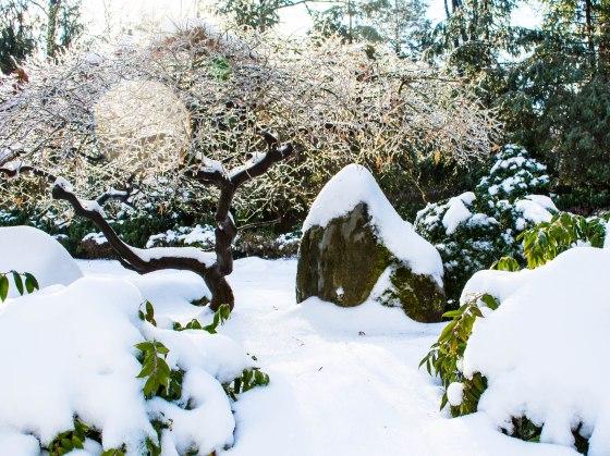 snow-0800